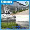 Low Cost Plastic Film Greenhouse for Commercial Sales