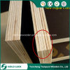 1220X2440mm Poplar Core Anti-Slip Black/ Brown Film Faced Plywood