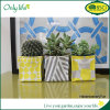Onlylife Factory Oxford Fabric Planter with Different Colors