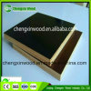 Construction Materials Hot Press Phenolic Film Faced Plywood