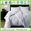 Microfiber Polyester Quilt & Polyester Comforter