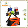 6-Pack Can Insulated Cooler Bag Lunch Tote Bag with Can Holder