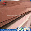 HPL Sheet Fireproof Melamine MDF Board in Wall Panel