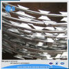 China Concertina Razor Barbed Wire for Sale (factory)