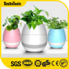 Amazon Smart Touch Plant Piano Music Flower Pots with Bluetooth