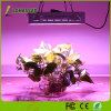 Full Spectrum 300W - 1200W LED Grow Light for Plants Veg & Flower
