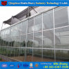 New Shade Net Cover Material China Glass Greenhouse for Mushroom