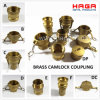 Brass Camlock Coupler in Type a, B, C, D, E, F, DC, Dp