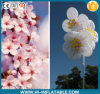 Lighting Inflatalbe Wedding Flower Decoration/Hanging Inflatable LED Flower/Lighted Inflatable Flower Decoration for Wedding