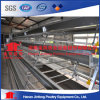 Best Price Automatic Layer Chicken Cage for Nigeria Farms