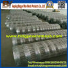 Hot Dipped Galvanized Cattle Horse Fence Sheep Fencing