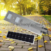 30W All-in-One Solar LED Street Light with Solar Panel