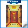 Passenger Elevator (ZF-03)