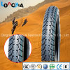 DOT E-MARK Approved Heavy Duty Motorcycle Tyre for Mexico