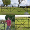 Wrought Iron Decorated Type Garden Farm Gate