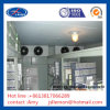 Cold Storage Room with Box Type Condensing Unit