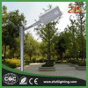 30W Factory Supply Professional Design Ce RoHS Listed LED Solar Street Plaza Light