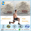 Raw Hormone Anabolic Steroids Powder Mesterolones Proviron for Muscle Building