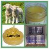 High standard yellow cream Lanolin for skin beauty CAS 8006-54-0