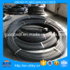 5mm Spiral Rib PC Wire