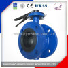 Industrial Double Flanged Butterfly Valve with Gear Operator