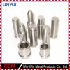 Speciality Fasteners Manufacturers OEM Construction All Types of Fasteners