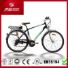 2017 New Model Electric Bicycle En15194 Approved Hub Motor Bike