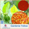 Gardenia Yellow Powder Color Value 300/400/500