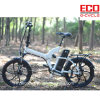 Foldable Electric Bicycle with Lithium Battery Absorb Type