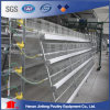 Hot Sales Chicken Layer Cage