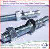 China Fastener High Quality Expansion Wedge Anchor Bolts