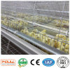 Poultry Equipment High Capacity A Battery Pullet Chicken Farm Cage