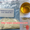 Boldenone Cypionate Bodybuilding Steroid Raw Powder Sources