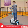 Electric Chariot for Kids