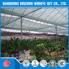 HDPE Garden Green Sun Shade Net/ Netting/ Cloth/HDPE Plastic Agriculture Green Sun Shade Net