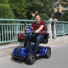 Adult Electric Scooters with Ce