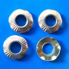 Wholesales Six Claws Knurled Washers