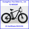 Myatu Fat Tire Chopper Electric Bicycle with Fat Tire Wheel