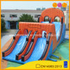 Professional Supplier Giant Inflatable Slide for Adults and Kids (AQ14186-4)
