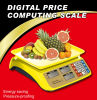 Best Selling AC/DC Power Weighing Small Price Computing ABS Plastic Scale (DH-607)