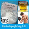 Strong Ment / Trestolone Acetate Steroids for Bodybuilder Enhancement 6157-87-5