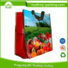 Reusable Eco-Friendly Promotional PP Woven Shopping Bags