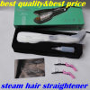 Steam Hair Straightener with 2year Warranty