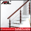 Stainless Steel Hot Sell Pipe Railing (DD010)
