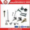 Wood Screw Drywall Screw Self Tapping Screws Self Drilling Screw