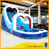 Double Arch Inflatable Water Slide (AQ1010)