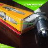 Ngk Good Quality Motorbike Spark Plug D8ea 2120