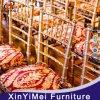 Wholesale Hotel Colorful Wedding Metal Tiffany Chair