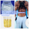 99% Steroid Hormone Testosterone Acetate CAS 1045-69-8 for Bodybuilding Fitness
