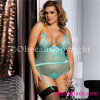 Different Colors Comfortable Plus Size Lace Lingerie